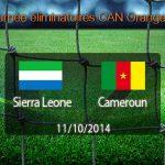 CAN 2015 : Les Lions font douter