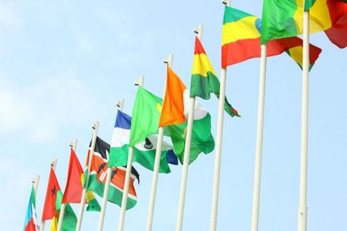 4626401_7_18db_des-drapeaux-africains-flottant-lors-du-sommet_8ae6581c3cd2ed7d1a585d27df21d2ee