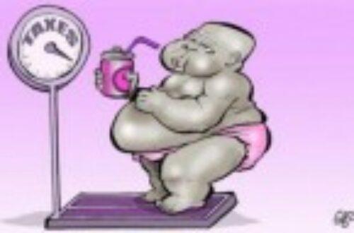 Article : Mythes sur les habitudes alimentaires, source de l'obésité en Afrique