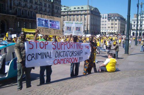 Article : Qui a peur de la diaspora camerounaise? (2/2)