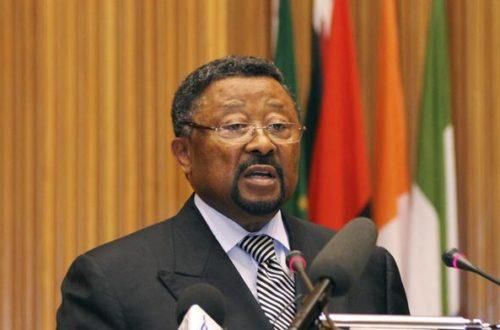 Article : Voici pourquoi les Camerounais détestent Jean Ping