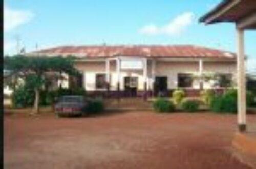 Article : Accords de Foumban : aux origines du problème anglophone au Cameroun