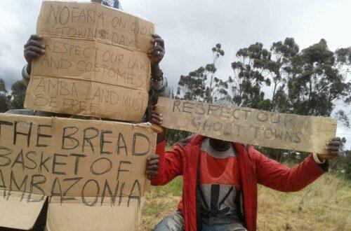 Article : Au Cameroun, les soubresauts d'une crise anglophone et le sabotage du fédéralisme