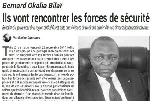 Article : Comprendre le positionnement des acteurs dans la crise anglophone au Cameroun