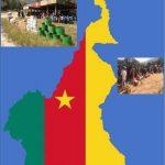 La solution à la crise anglophone au Cameroun n'est pas humanitaire, mais politique