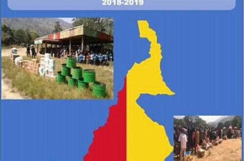 Article : La solution à la crise anglophone au Cameroun n'est pas humanitaire, mais politique