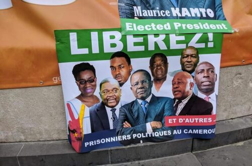 Article : Cameroun: pourquoi les marches blanchesdu MRC font-elles peur ? (1/2)
