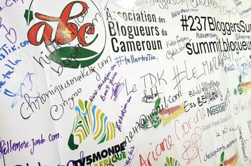 Article : Au Cameroun, on parle du blogging dans un sommet